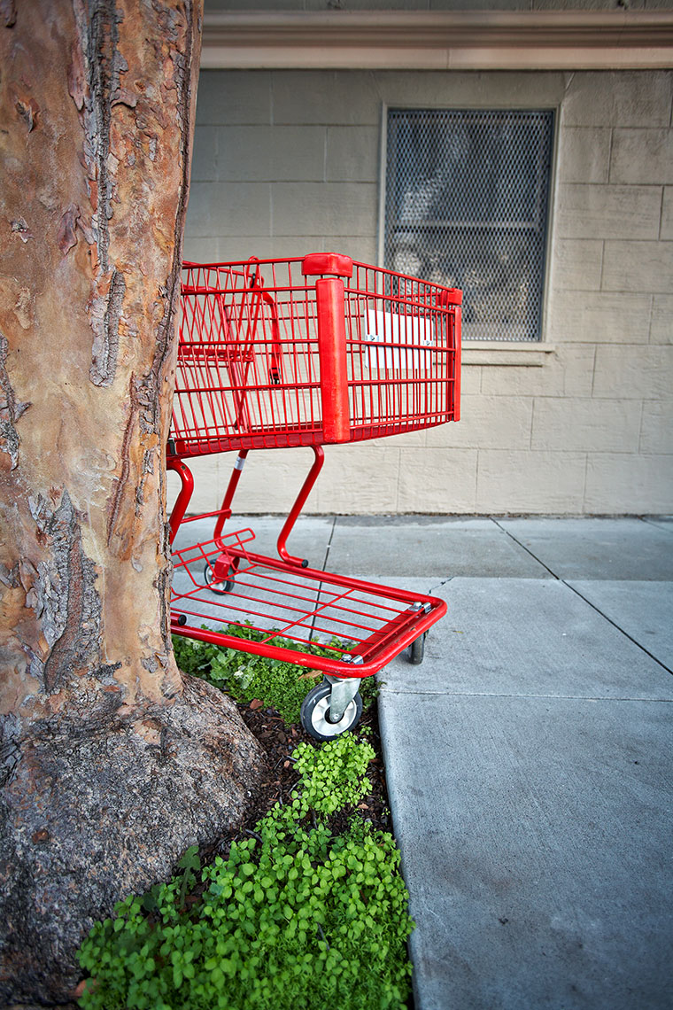 What I Seen - Shopping Cart